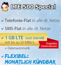 All Net Flat LTE Special